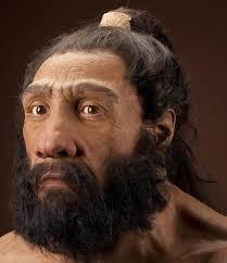 Homo de neanderthal